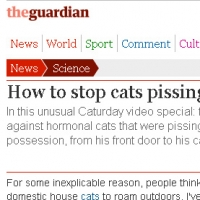 video-how-to-stop-cats-pissing-on-your-car-grrlscientist-science-theguardian-com-short