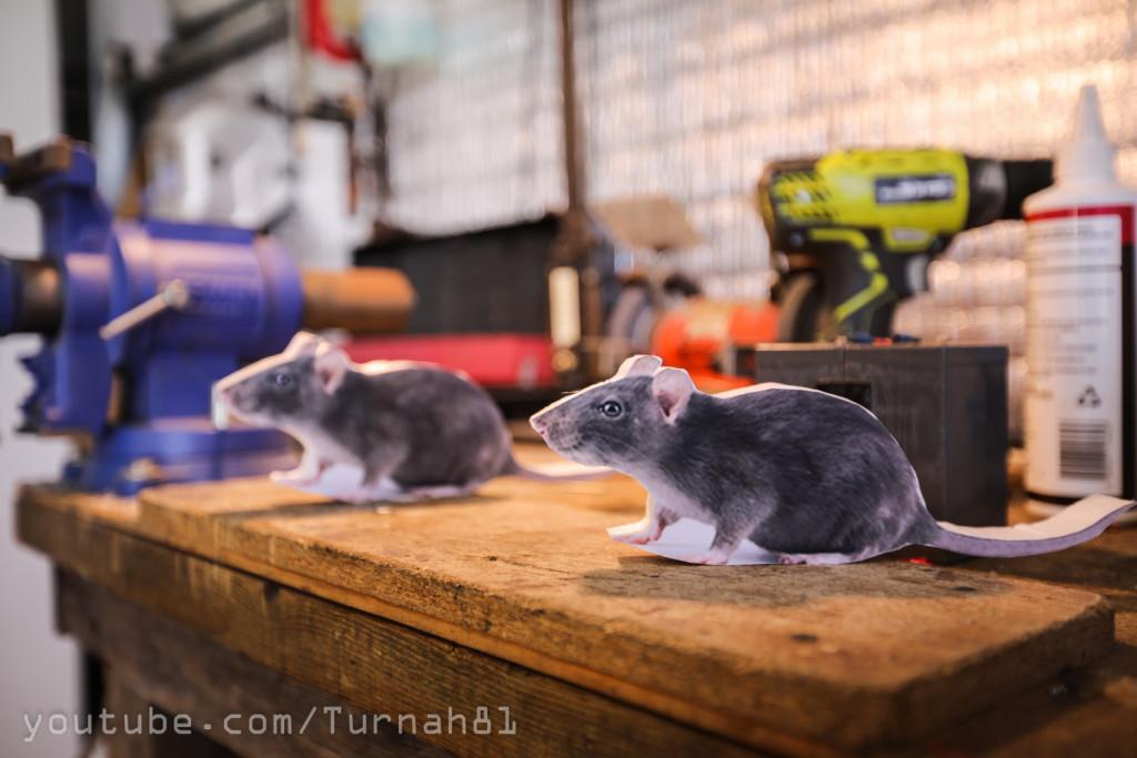 Trip wire mouse trap- Styrofoam rats