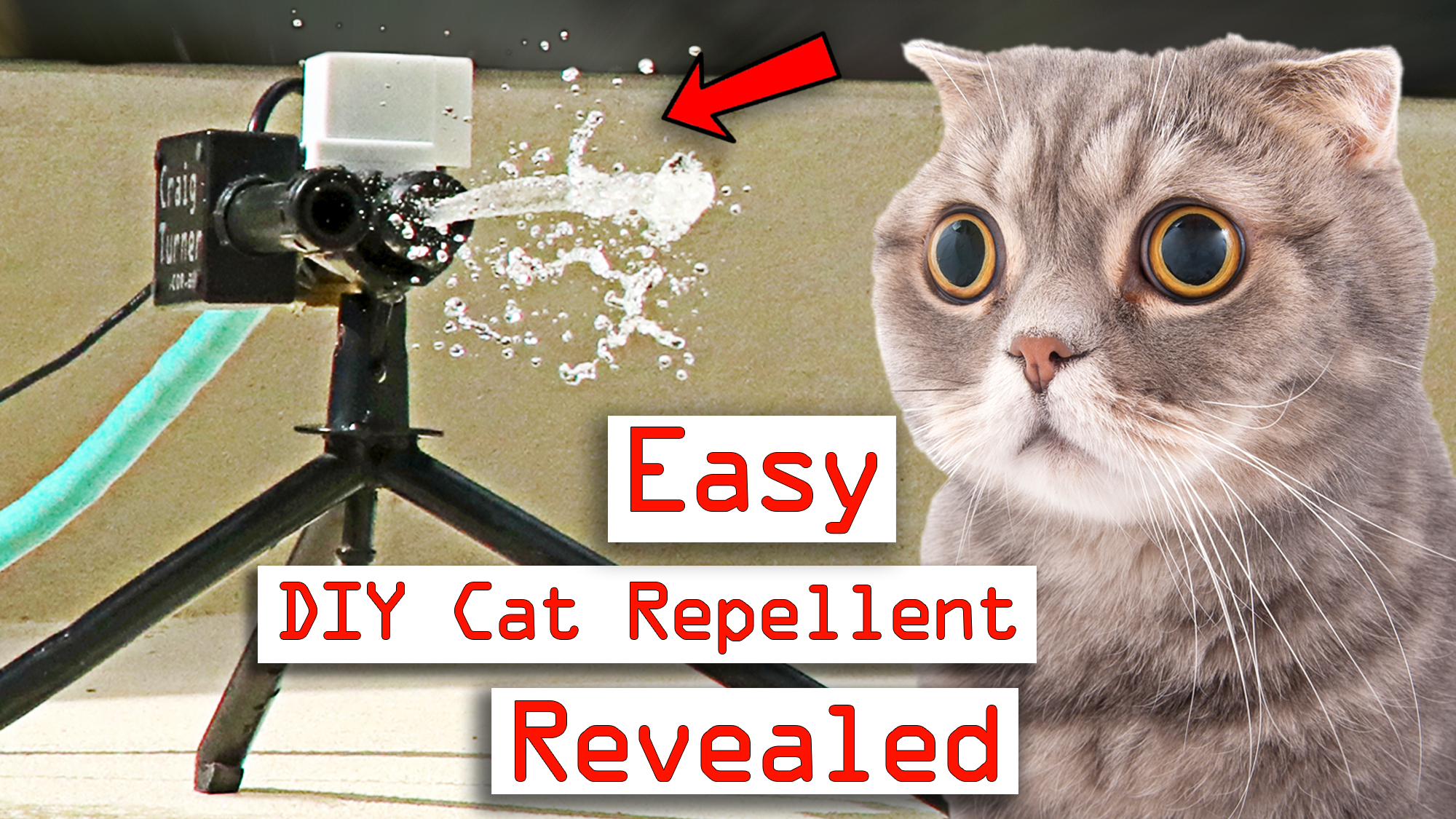How To Make A Cat Repellent Automatic Sprinkler For
